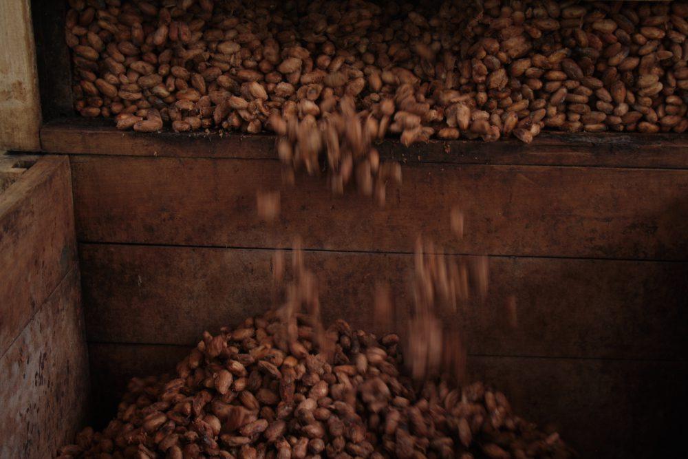 Permalink auf:Schokolade aus Panama