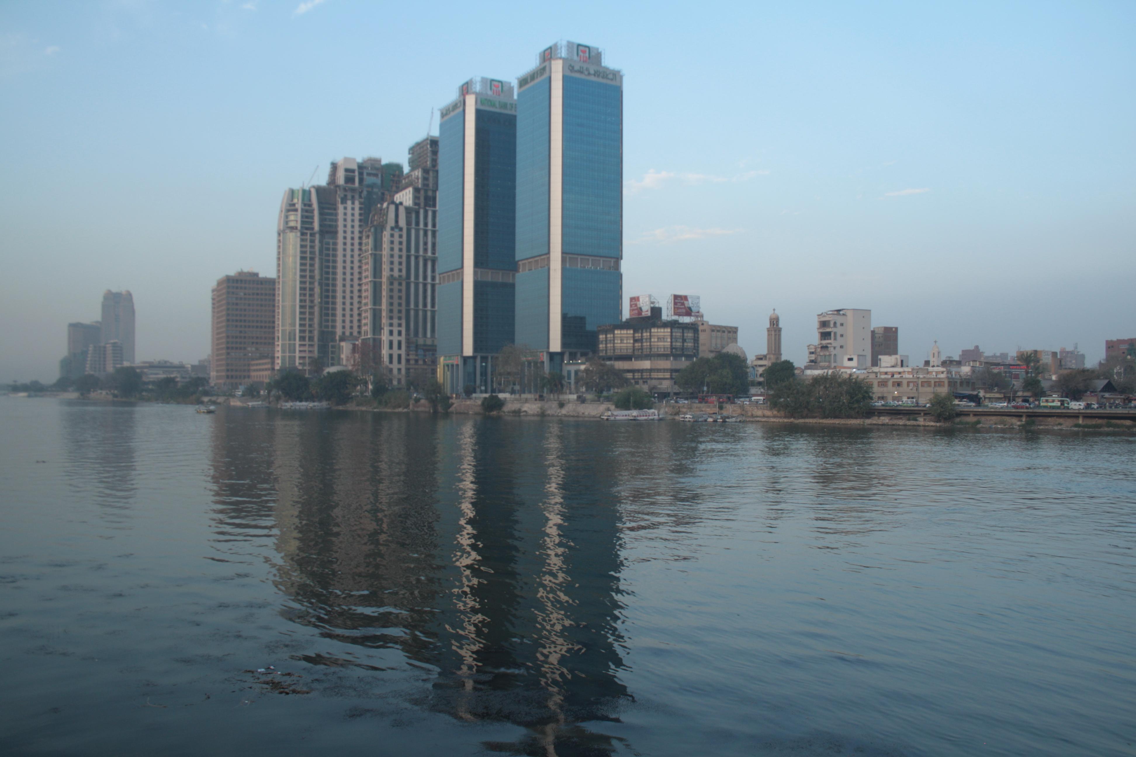 Permalink auf:Ägypten – Wüstenwald